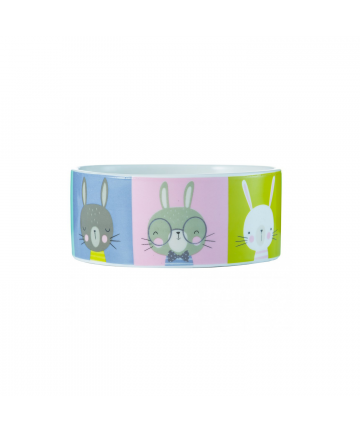 Housing  Pawtrait Rabbit Bowl (5.99) 1