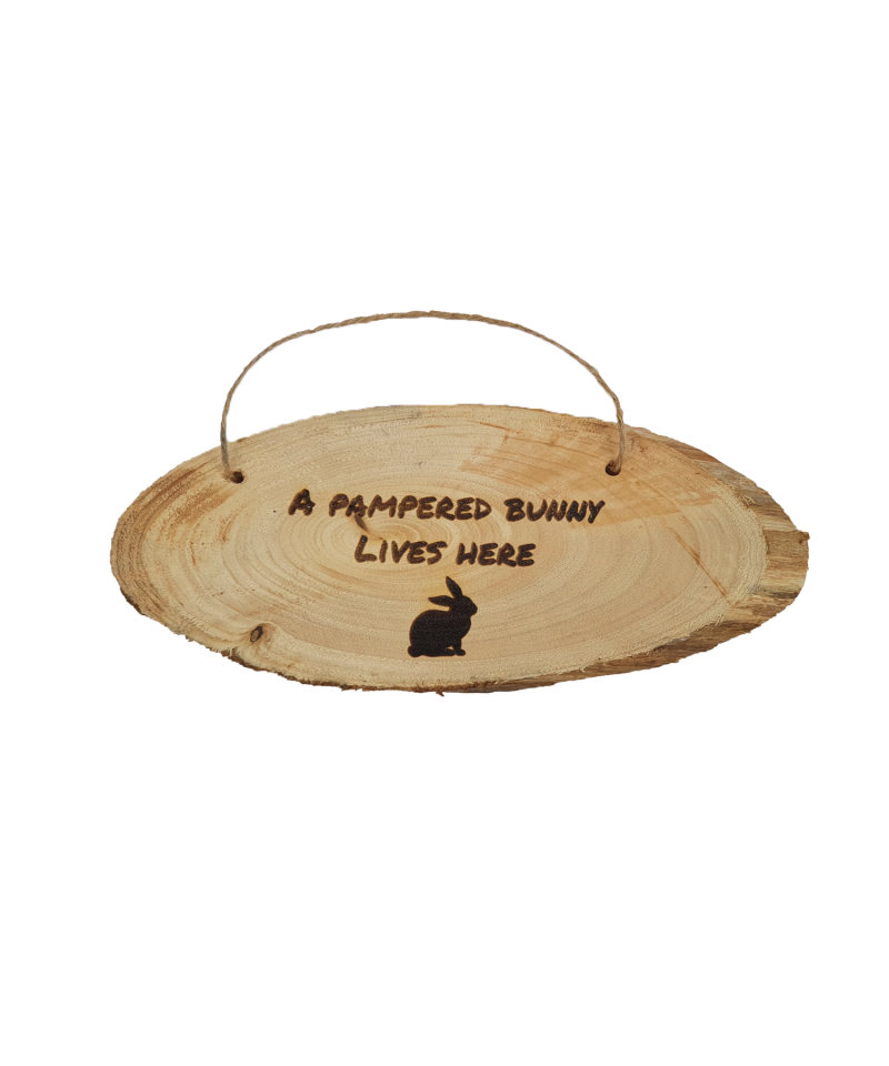 Housing  A Pampered Bunny Lives Here - Wooden Plaque (9.99) 1