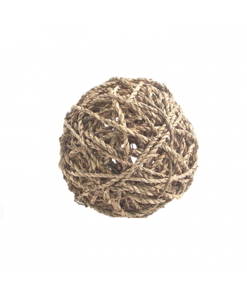 Enrichment  Sea Grass Fun Ball - Large (2.49) 1