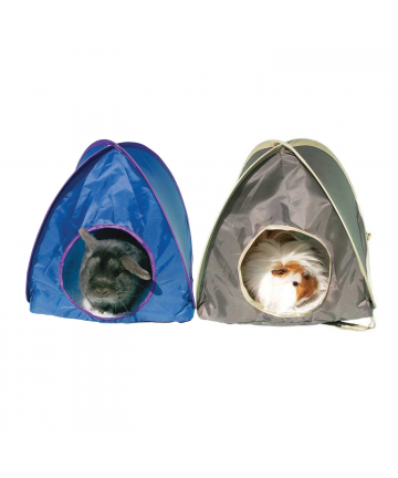 Housing  Pop Up Tent (6.49) 2