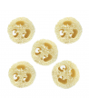 Enrichment  Loofah Slices - Pack of 5 (1.69) 1